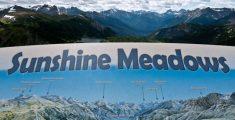 Sunshine Meadows, senderismo fácil en las Montañas Rocosas