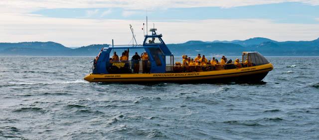 Barco de empresa de avistamiento de ballenas en Vancouver
