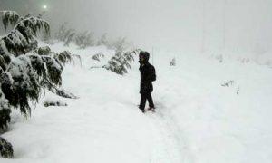 Consejos para pasar el invierno en Vancouver