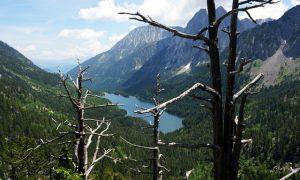 10 recomendaciones para disfrutar de una estancia fabulosa en los campings del Pirineo Catalán de Lleida