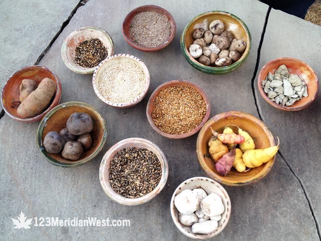 papas y quinoa Perú