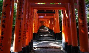 15 días en Japón: diario de viaje
