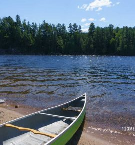 Parques Naturales de Canadá: Algonquin Park